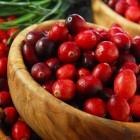 спелые сочные ягоды клюквы