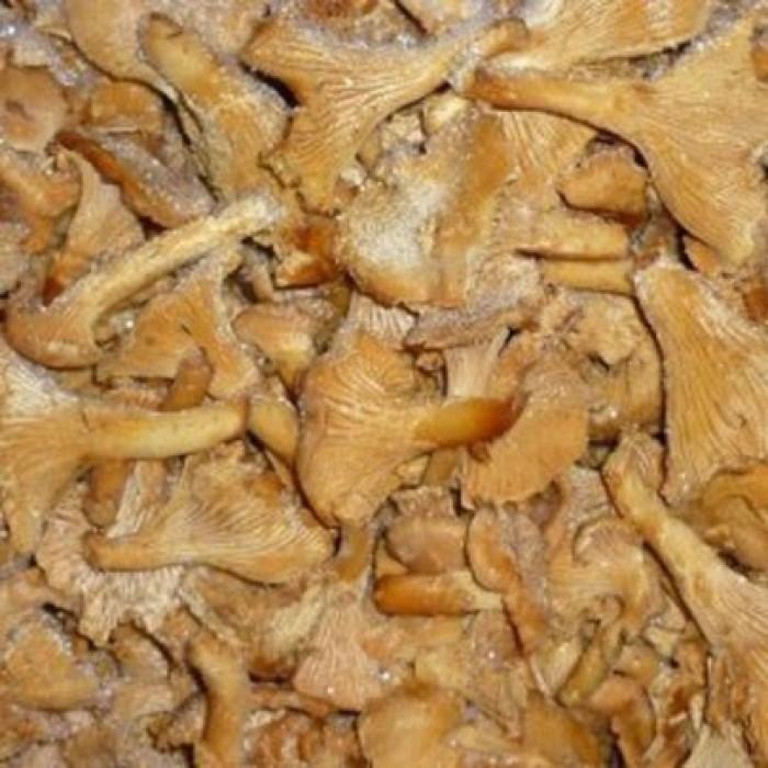 сушеные лисички от паразитов рецепт