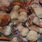 стоимость замороженных белых грибов