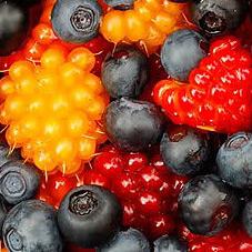 Купить ягоды оптом в Москве
